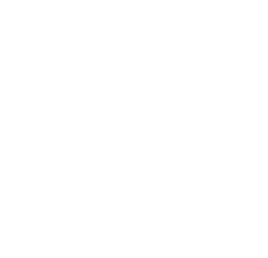 Go-To Guy Logo