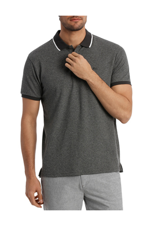 Maddox - Lennox Tipped Polo
