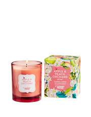 Mozi - Classic Candle - Apple & Peach Orchard