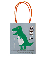 Dinosaur Party Bags 8Set