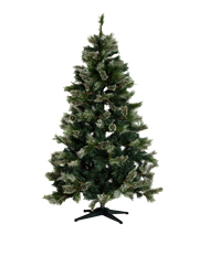 Christmas Pictures Of Trees